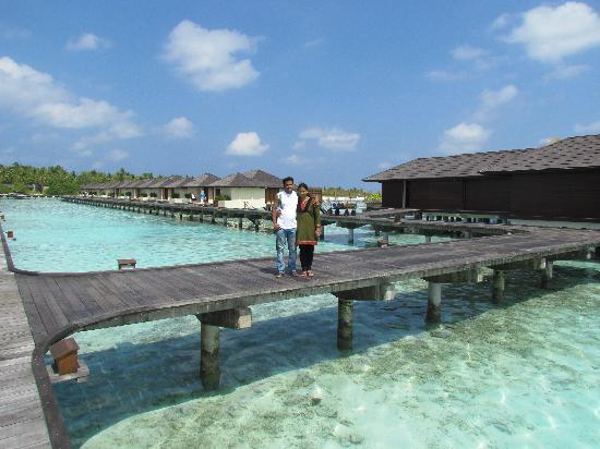 Water bungalow in line