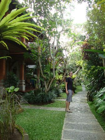 Ubud Bungalow : The Garden and pathway to rooms