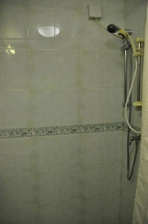 The Beehive: Two shower heads ...