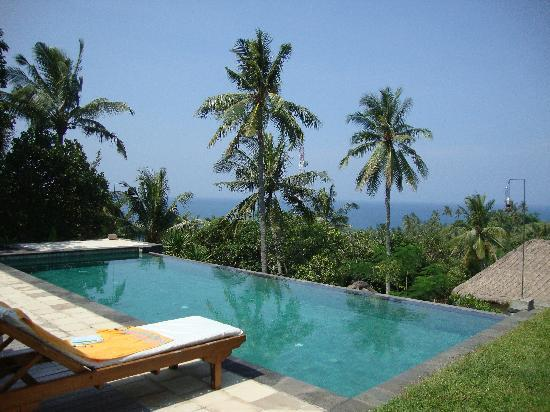 Segara Villas: The amazing pool and view