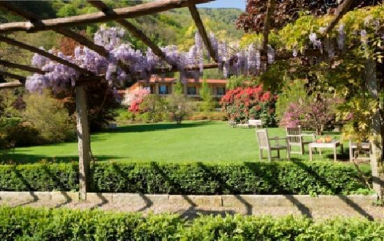 Park Hotel Villa Belvedere: the park