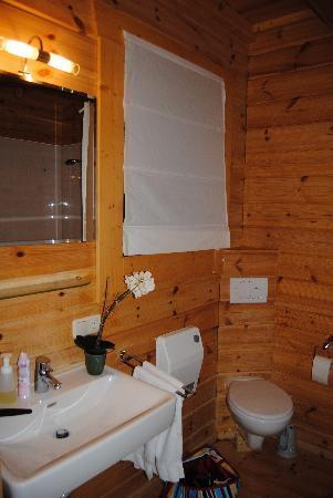 Mountain Inn: Badezimmer