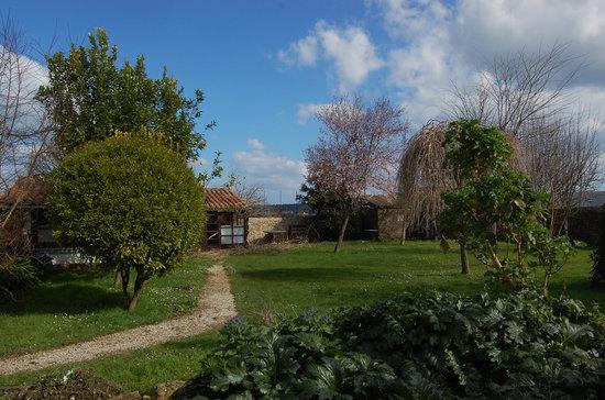 Ribadedeva Municipality, Spain: una parde del jardín