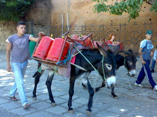 Chefchauen, Marruecos: Repartiendo butano