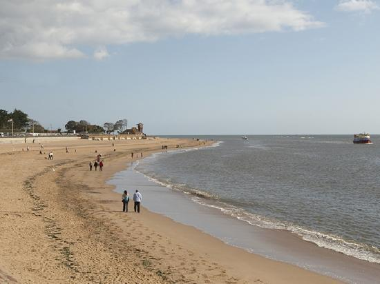 The Imperial Exmouth Hotel: View of the Beach from the Coast & Country Imperial Exmouth Hotel