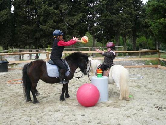 ‪‪Domaine de Pommayrac‬: Pony games and pony trail riding for children‬