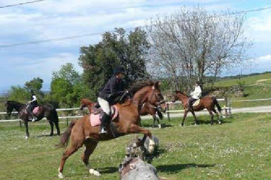 Domaine de Pommayrac: Intensive horse riding courses for teens