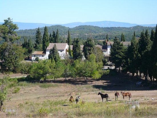 Verzeille, Франция: Overview of the horse riding centre