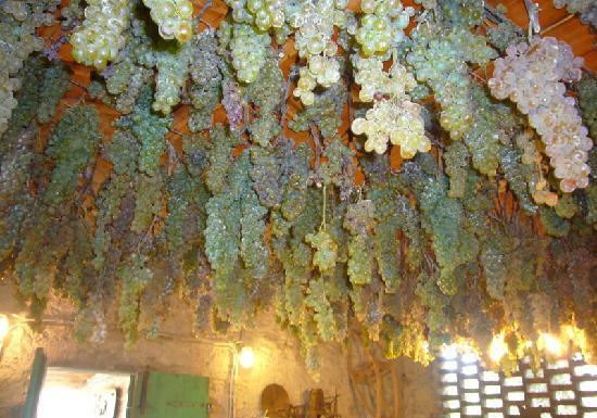 Wine Tours with Italy and Wine: Grapes for the Vinsanto