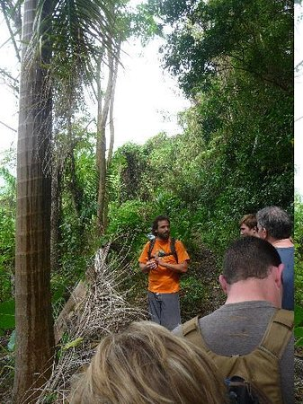 Luquillo, Πουέρτο Ρίκο: Rocky giving us info about the plants