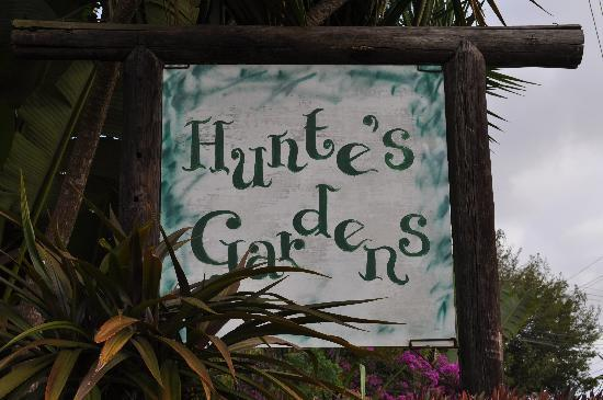 Hunte's Gardens: The Sign