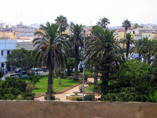 Riad La Villa & SPA : VUE DU SOLARIUM