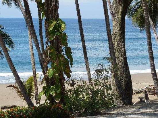 Tango Mar Beachfront Boutique Hotel & Villas: Strand