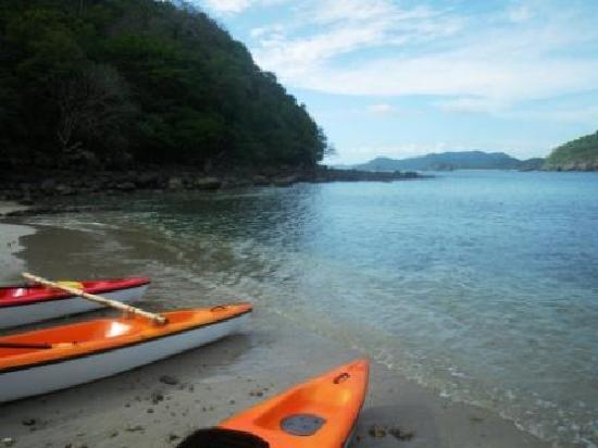 Odysea Kayak Tours: beach landing at Playa El Toro