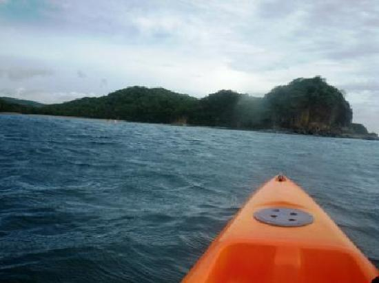 Odysea Kayak Tours: Paddling along under way
