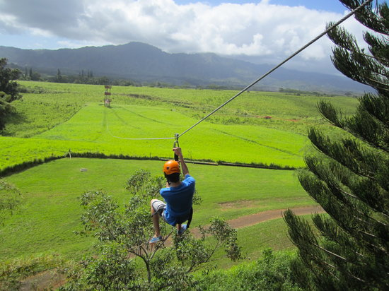 Just Live! Zipline Tours: My son on the last zipline of the day.