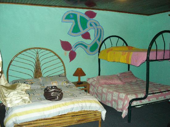 Vida Tropical B and B: Fish room