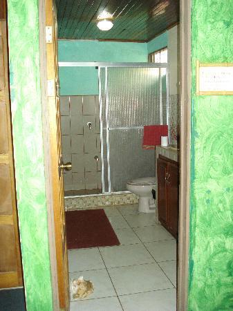 Vida Tropical B and B: Washroom