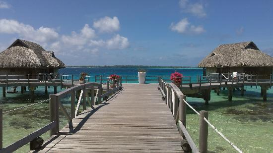 Sofitel Bora Bora Marara Beach Resort : Beautiful in Bora Bora