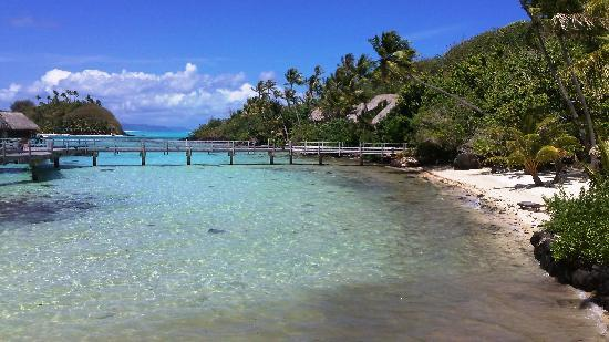 Sofitel Bora Bora Marara Beach Resort : One beach area on Motu