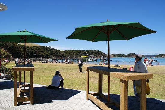 Half Day Bay Of Islands Discovery Tour From Paihia