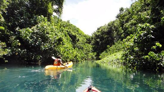 Bokissa Private Island Resort : Marlo River