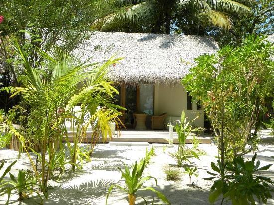 Maafushivaru: Beach bungalow