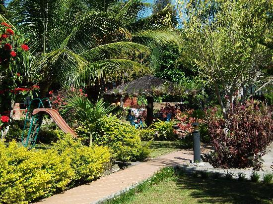 Samosir Cottages resort: Gardens at Samosir Cottages