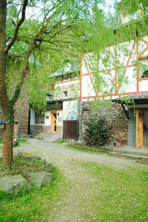 Gasthof-Hotel Schmause Mühle: A view of the Hotel and restaurant entrance.
