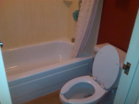 ريد روف إن فيرجينيا بيتش: Bathroom