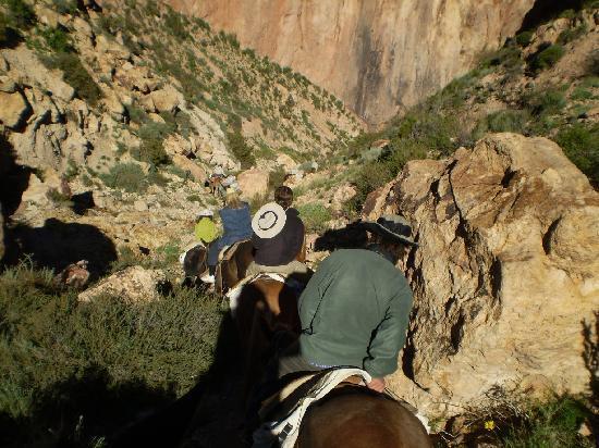 Trekking Travel Expediciones - Day Tours : Entrando al cañadón