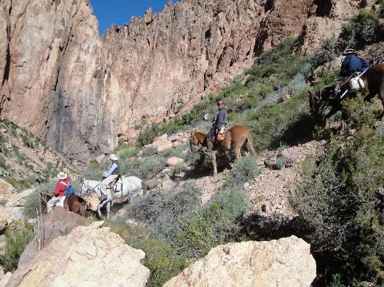 Trekking Travel Expediciones - Day Tours : Cañadón
