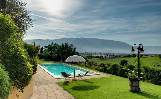 Agriturismo i Mille Ulivi : La piscina