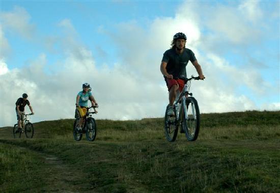 Mobius Bike Trails
