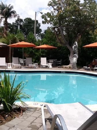 Hotel Urbano: Hotel's pool
