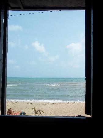 New Hut Bungalows: View from the hut