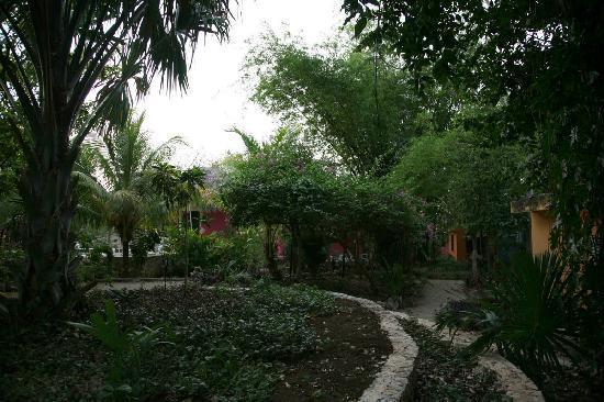 Hotel Macanche Bed & Breakfast: One path in the garden