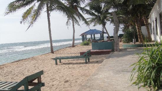 Beauty Coral Hotel: Hotel beachside