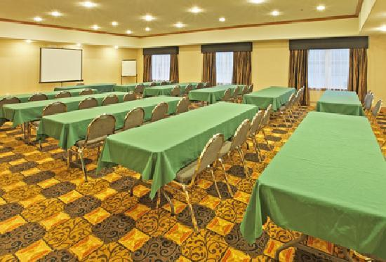 Holiday Inn Express Hotel & Suites Kilgore North: meeting space