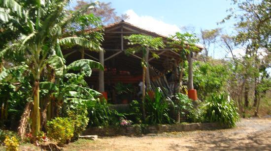 View of Casa Pelon from the beach