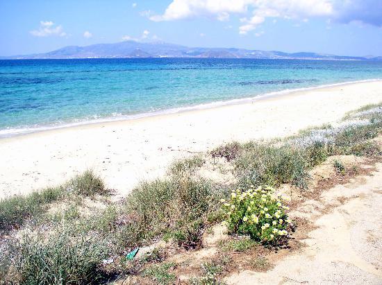 Naxos, Greece: Südlicher teil des Strandes