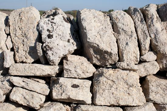 Tenuta Storica di San Basilio : Muro a secco