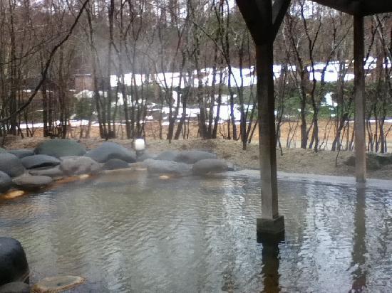 Yakumo-cho, اليابان: 旅館の露天風呂 小鳥の声を聴きながら