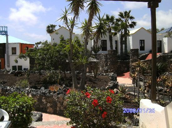 Fuerteventura Beach Club : view from terrace