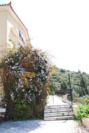 Vathy, Greece: Flowers at the balcony