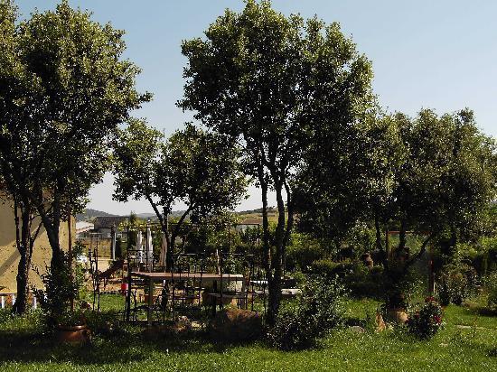 La Cimbarra: Exterior jardin