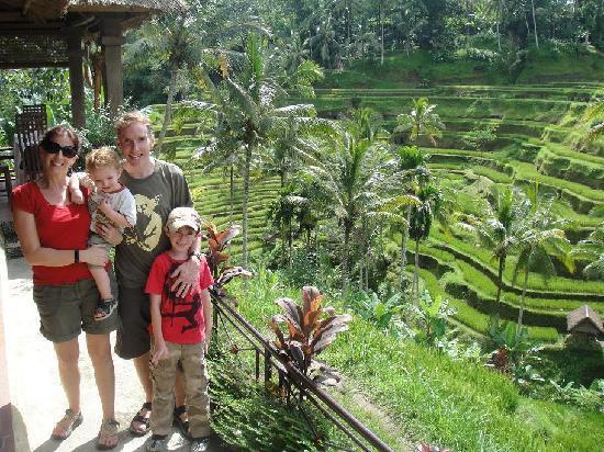 Alam Jiwa: Bali April 2011