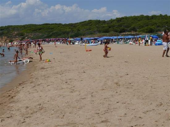 Residence Club La Darsena: spiaggia