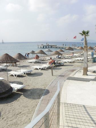 Armonia Holiday Village & Spa: View of the beach