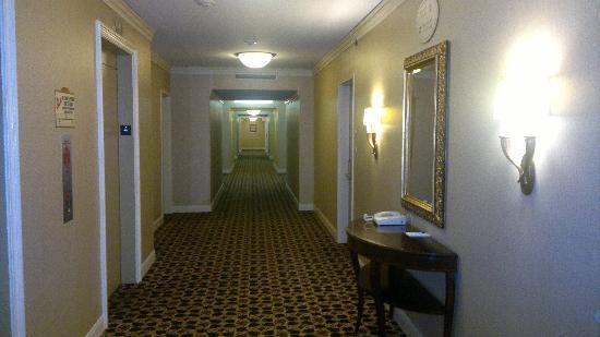 Crowne Plaza Houston Downtown: Old, long, very long hallway